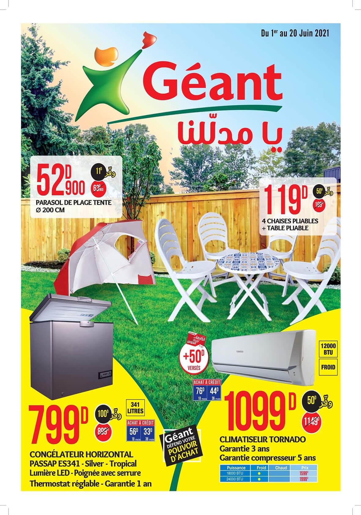 Promos Géant